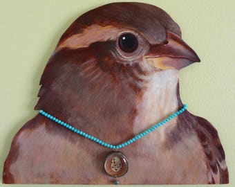 House sparrow portrait with necklace