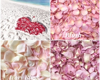 Light Pink Rose Petals - Freeze Dried Rose Petals