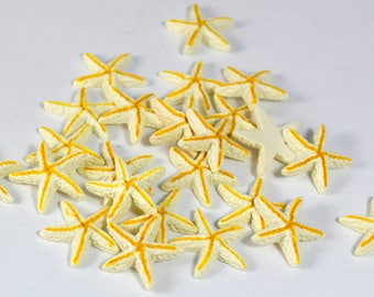 X 10 polymer clay miniature starfish