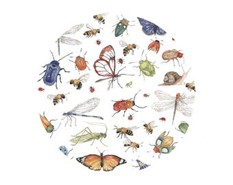 Insects- Fine Art A4 Giclee Print