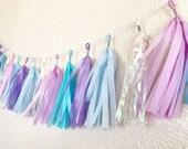 Tassel Garland | Frozen Party Decorations | Winter Wonderland Party | Baby Shower Decorations |Iridescent Banner | Winter theme party