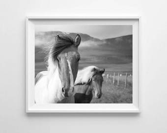 Black and White Horse Photography Printable, Horse Wall Art, Horse Wall Print, Horse Printable, A4 A3 A2 Print, Horse Decor, Large Print