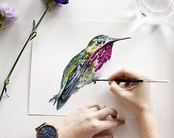 Animal Watercolor Workshop  (Hummingbird)
