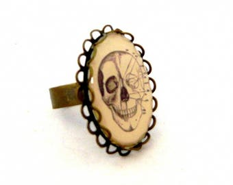 "vintage collection ""Anatomy"" skull head ring"