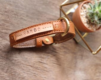 Personalized cat collar, pet collar