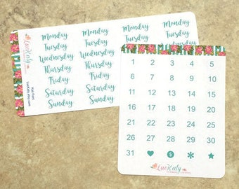 KALI FONT: Date Dots and Days of the Week planner Stickers   COLOR options   Travelers Notebooks or Any Undated planner   LucKaty