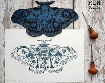Teal Blue Emporer Moth botanic art prints, wall art, wall decor, living room wall art, bedroom wall art,Illustration