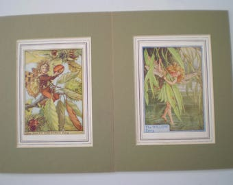 Vintage Prints : Cicely Mary Barker - Flower Fairies - 'The Sweet Chestnut Fairy' and 'The Willow Fairy' - Mounted