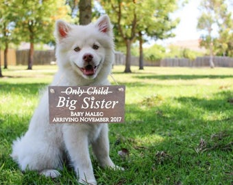 An Only Child no more! Pregnancy - Baby Announcement Personalized Last Name and Due Date Sign Photo Prop. Dog Sibling Big Brother Big Sister