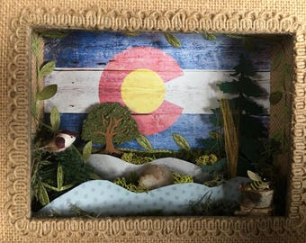 Colorado / nature themed shadow boxes