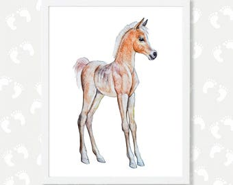 Baby Horse Decor Nursery Wall Art Boy Girl Digital Download Art Print Animal Watercolor Painting Printable Art  Horse Print Gift Equestrian