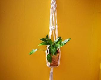 Modern macramé plant hanger
