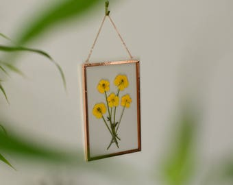 """Real pressed flower wall hanging   bouquet of buttercups   4x6"""" glass with copper edging   botanical home decor"""
