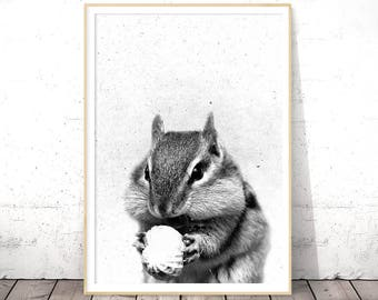 Squirrel Print, Woodlands Nursery Wall Art Decor, Black and White Baby Animal Prints, Woodland Animals Printable Art, Chipmunk Print