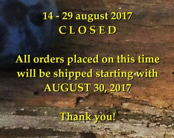 Hand painted glass, Hand painted glassware, Shop Announcement, Announcement, Please do Not Purchase this item!!!