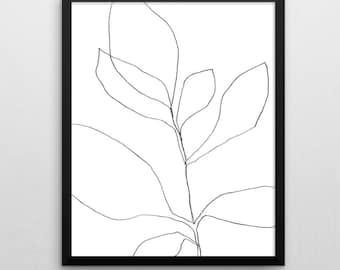 Black & White Botanical Illustration, Digital Download, Scandinavial Print, Botanical Wall Art, Line Drawing, Botanical Art, Minimalist Art