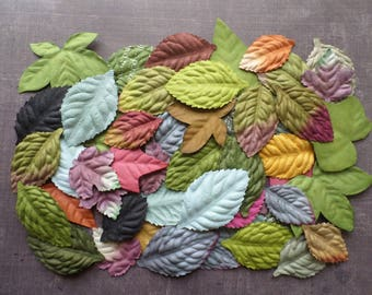 Lot 40 Nature leaves paper mix colors