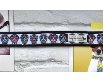 White skulls adjustable dog collar