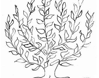 Henri Matisse The Plain Tree, 1951 (Silkscreen print)