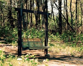 Maine Photography, New England, Mackworth Island, Swing, Bench, hiking, travel, vacation, oceanview