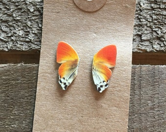 Butterfly Wing Whimsical Stud Earrings