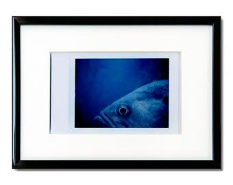"Fine Art Photography ""Monterey"" Framed Instax Mini Print"