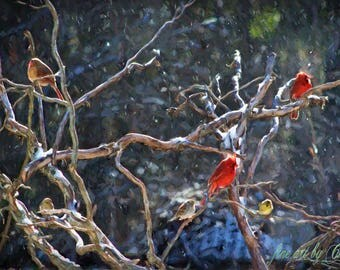 Birds In Snow Painting, Cardinal Bird Painting, Winter Painting, Colorful Landscape, Rustic Landscape