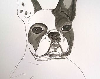 French bulldog sketch art
