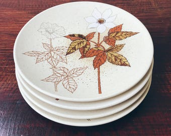 Mikasa Alipine Meadow Salad Plates (Set of 4)