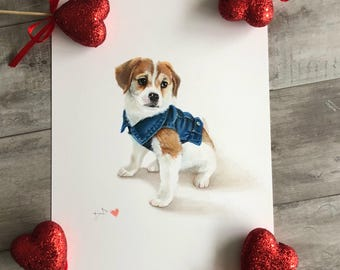 Themed Pet Portrait