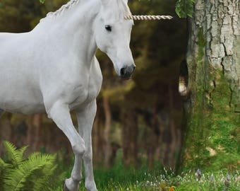 Unicorn encounter digital background