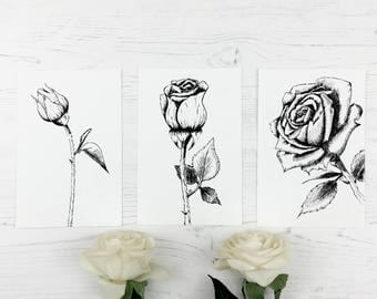 Black and white rose print (set of 3 prints), He makes all things beautiful in its time, ink, home decor, Bible art, Christian art