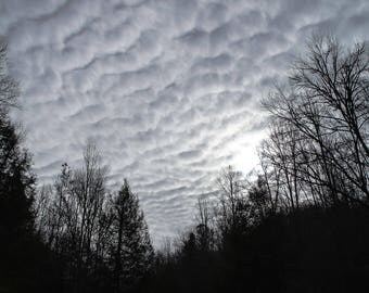 Clouds At Midday / Forest Hike / Great Smoky Mountains National Park / Instant Digital Download