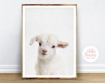 Lamb Digital Print, Baby Lamb Wall Art, Nursery Art Decor, Printable Art, Instant Digital Download Art, Instant Download, Printable Poster