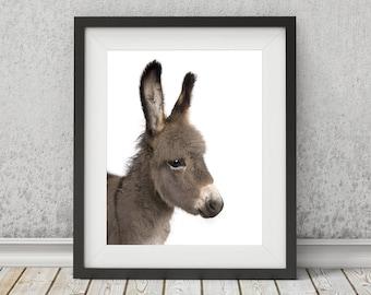 Donkey Art, Printable Art, Donkey Print, Nursery Decor, Animal Art, Baby Animal Print, Nursery Art, Baby Decor, Farm Animals, Baby Wall Art