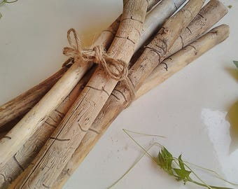 Olive Wood Sticks, set of 7,  Decorative Branches, Tree Branches Decor, Home Decor Branches, Vase Filler, Twig Crafts, Olive Wood Branches