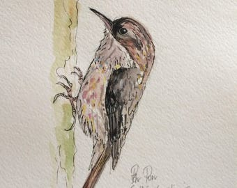 Watercolor illustration of a bird.