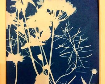 Riverbank sunography Cyanotype