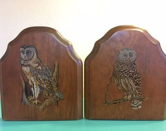 Vintage 1970's Hand Painted Owl Wooden Bookends