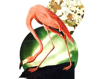 Pink Flamingo- limited edition- handmade surrealist collage- fine art- giclee print- satin fine art paper- signed and dated by artist- A3