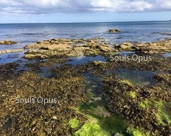 St Austell Shoreline UK