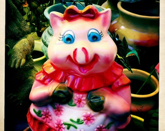 Mexican Pig Ceramic - square - digital photo download