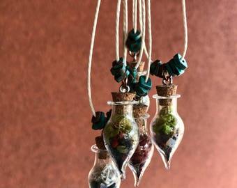 Mini Live Moss Terrarium Pendants