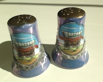 vintage novelty souvenir salt and pepper shakers