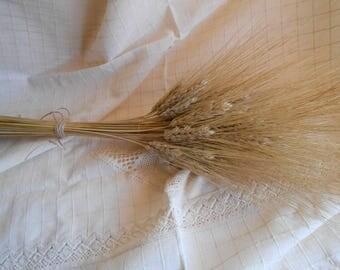 Decorative Wheat , Dried Wheat Bundles , Dried wheat bunch, Rustic wedding decor, Wheat wedding bouquet, Florist supplies,  Dried flowers