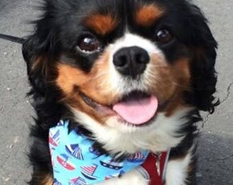 Designer Dog Bandanas for Dogs, Cats & Puppies in Blue Boats Nautical Sailor from The Bandana Cabana