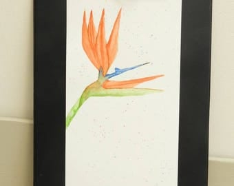 Watercolor original bird of paradise * deco tropical