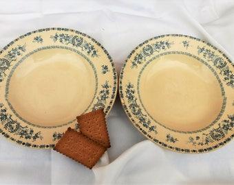 Duo d'assiettes en terre de fer ancienne, modèle Thermidor, S.F.N.G.R vaiselle antique