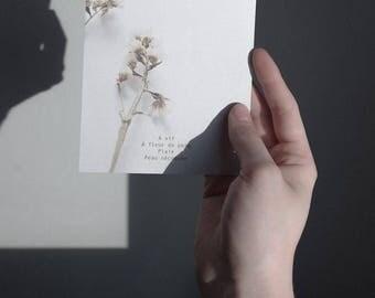 Matte print fragments