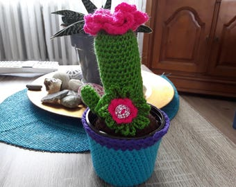 Cactus flowers crochet handmade